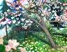 Galerie 1) Magnolienbaum auf der Margareteninsel, Budapest 2010.jpg anzeigen.